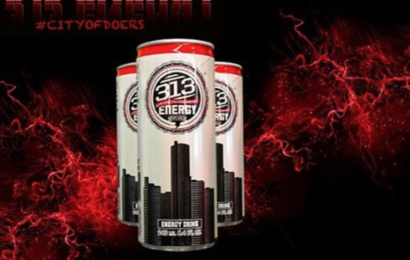 313 Energy